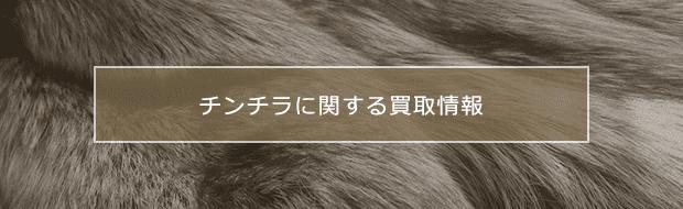 chinchilla買取に関する様々な情報をご紹介
